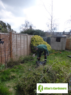 The Best Garden Maintenance for Willesden NW10 Residents