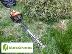 Experienced Garden Maintainers around Waterloo SE1