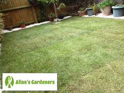 Proven Lawn Care from London